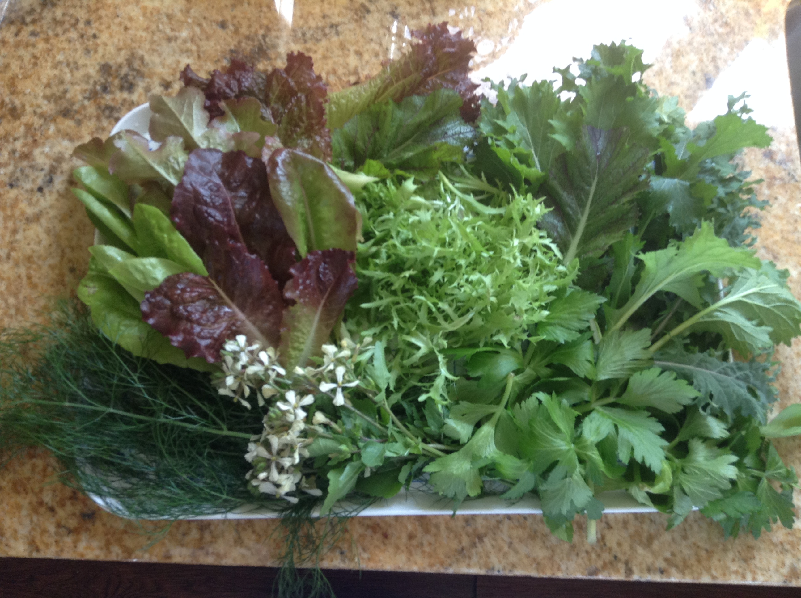 Sue doesn't just give me greens, she presents them on a tray