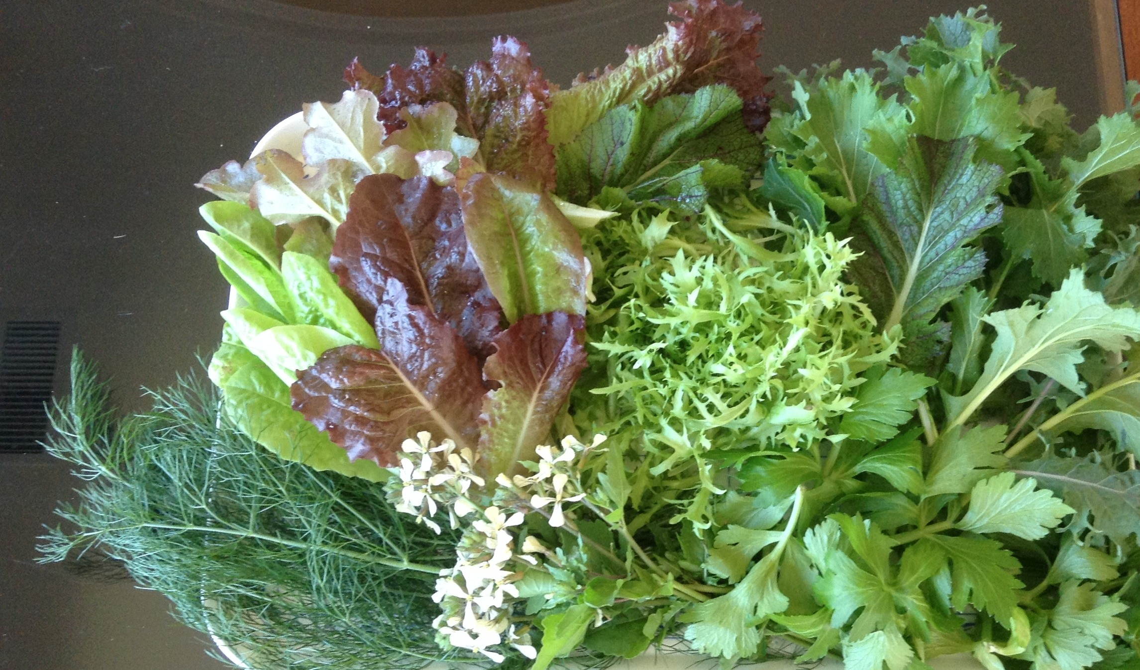 Greens delicate, spicy, gorgeous along with arugula flowers which provide a peppery snap